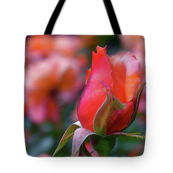 Rose On Rose Tote Bag by Rona Black