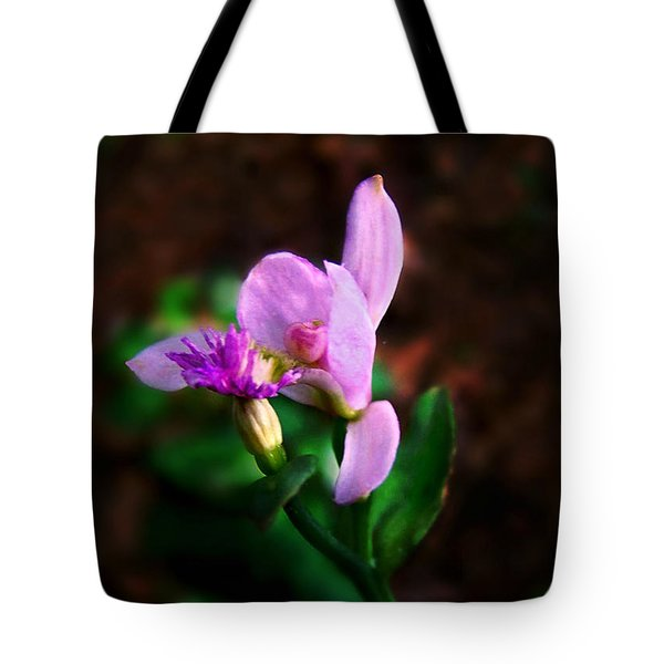 Tote Bag featuring the photograph Rose Pogonia Orchid by William Tanneberger