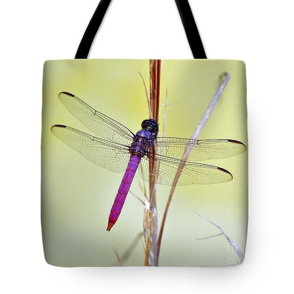Roseate Skimmer Dragonfly Tote Bag