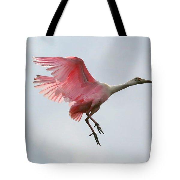 Roseate Spoonbill In Flight Tote Bag by Carol Groenen