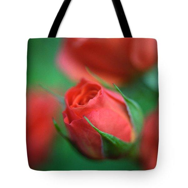 Rosebud  Tote Bag by Kathy Yates