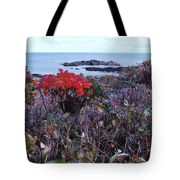 Tote Bag featuring the photograph Rosehip by Mim White