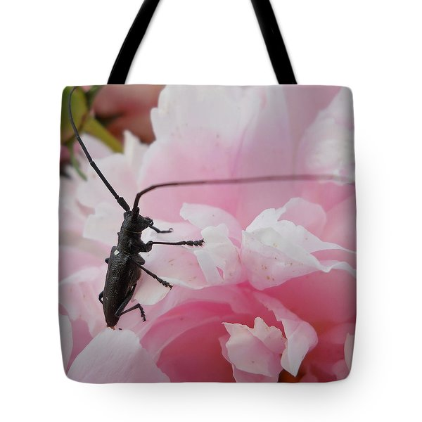Rosey Antenna Reception Tote Bag
