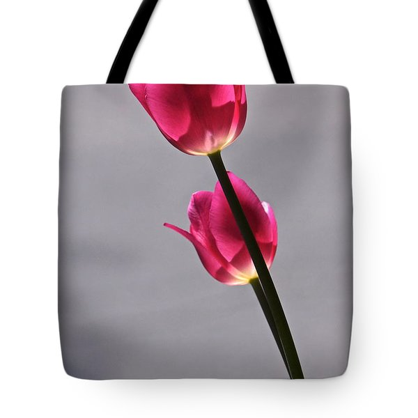 Rosy Loveliness For A Gray Day Tote Bag by Byron Varvarigos