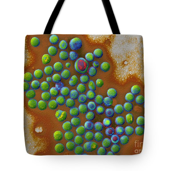 Rotaviruses Tote Bag by Eye of Science