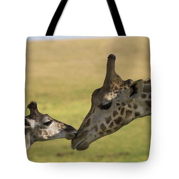 Rothschild Giraffe Male Calf Nuzzling Tote Bag