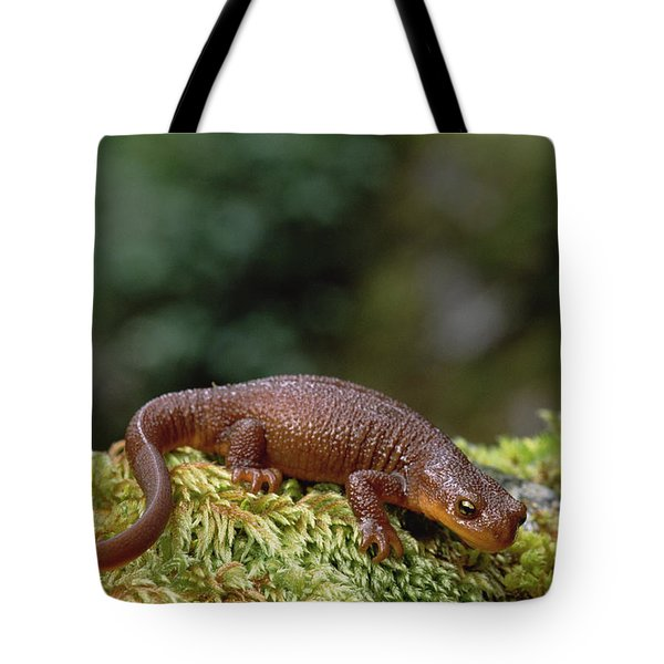 Rough-skinned Newt Oregon Tote Bag