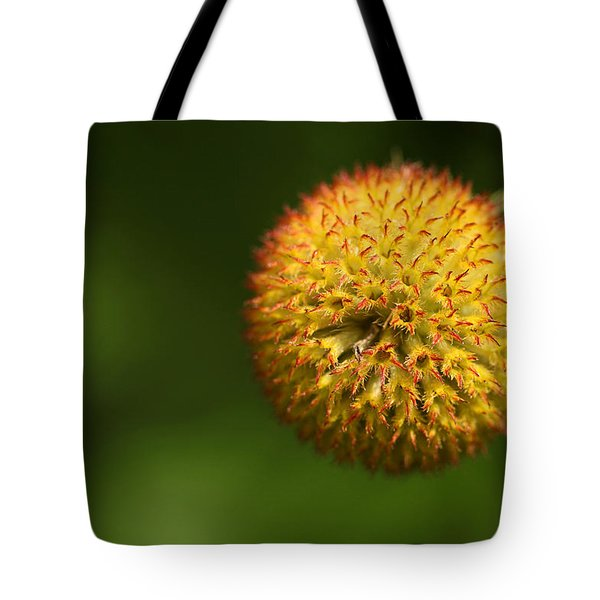Round Flower Tote Bag by Karol Livote