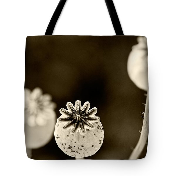 Round Hendecagon  Tote Bag