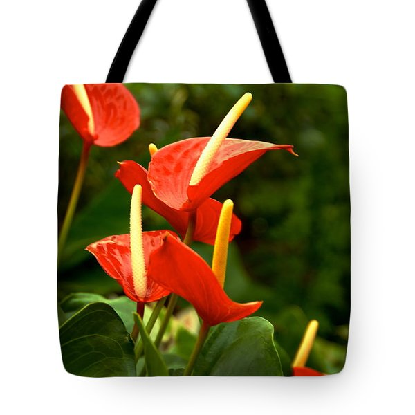 Tote Bag featuring the photograph Rousing Reds by Dee Dee  Whittle