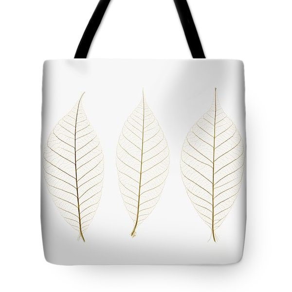 Row Of Leaves Tote Bag by Kelly Redinger