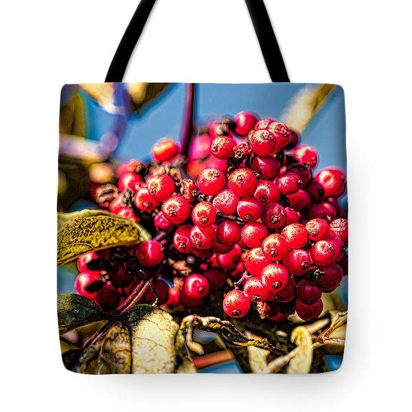 Rowan Berries Tote Bag