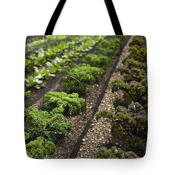 Rows Of Kale Tote Bag by Anne Gilbert