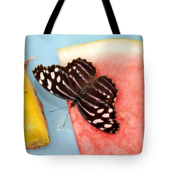 Tote Bag featuring the photograph Royal Blue Butterfly by Eva Kaufman