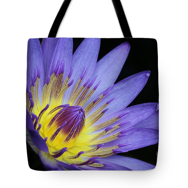 Royal Purple Water Lily #14 Tote Bag