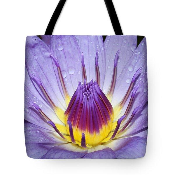 Royal Purple Water Lily #3 Tote Bag