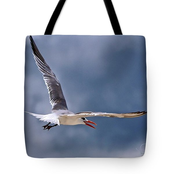 Royal Tern 1 Tote Bag