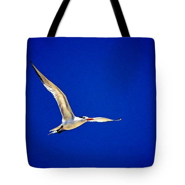 Tote Bag featuring the photograph Royal Tern 2 by Ludwig Keck