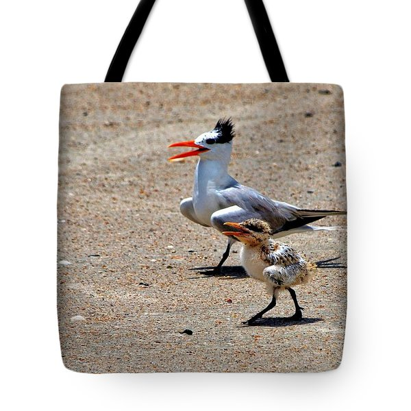 Royal Tern With Chick Tote Bag