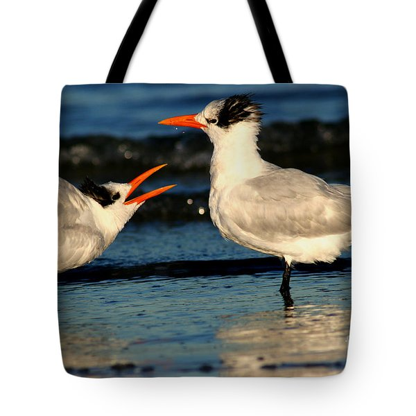 Royal Tern Courtship Dance Tote Bag