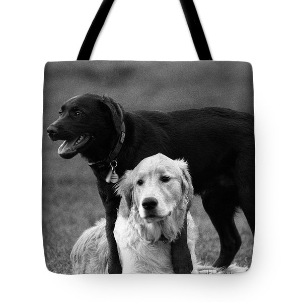 Rubbing Noses Tote Bag