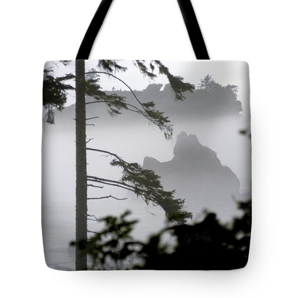 Ruby Beach Washington State Tote Bag