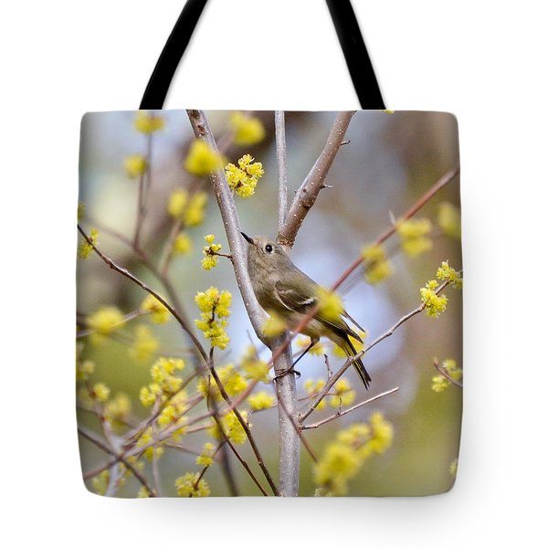 Tote Bag featuring the photograph Ruby-crowned Kinglet by Kerri Farley
