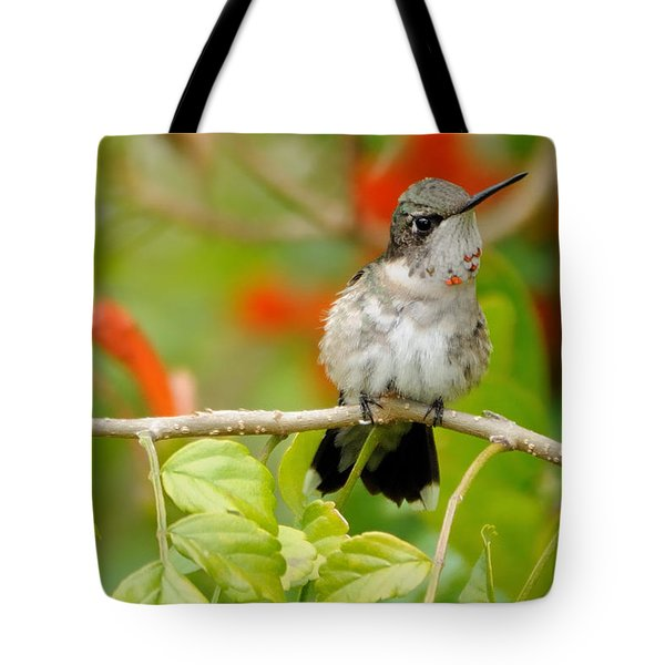 Ruby Throat Tote Bag