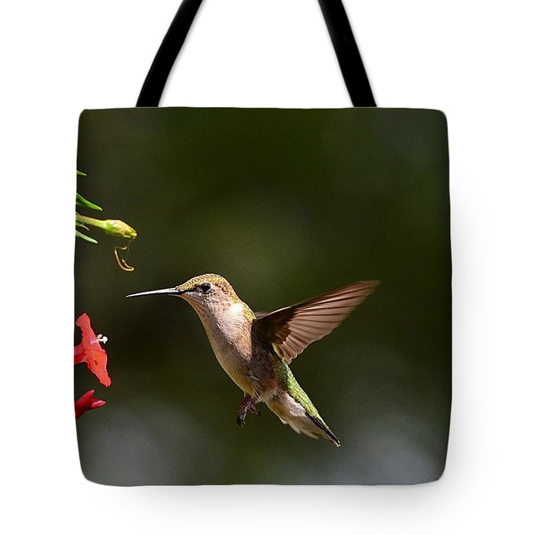 Ruby Throat Hummingbird Tote Bag by Kathy Eickenberg