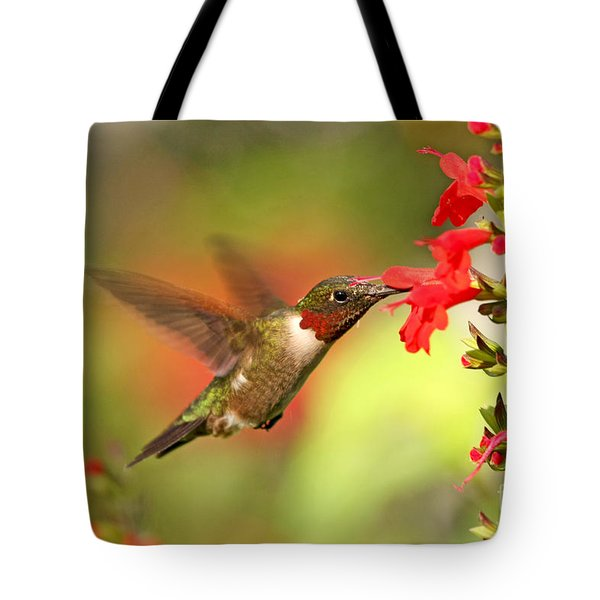 Ruby Throat Hummingbird Photo Tote Bag