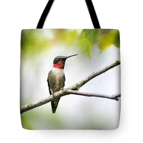 Ruby Throated Hummingbird Tote Bag by Christina Rollo
