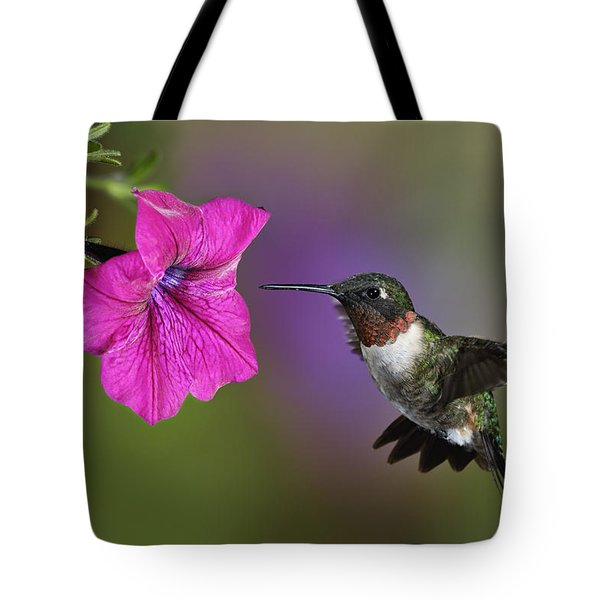 Ruby-throated Hummingbird - D004190 Tote Bag