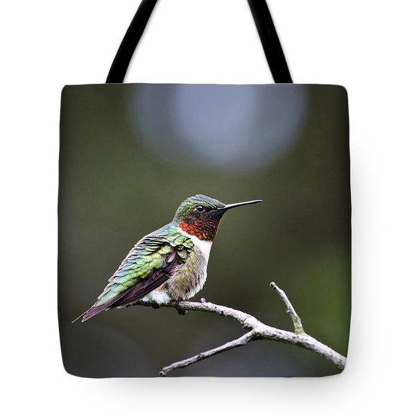 Ruby Throated Hummingbird Spotlight Tote Bag