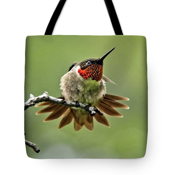 Ruby-throated Velocity Tote Bag by Christina Rollo
