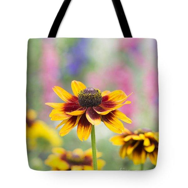 Rudbeckia Hirta Tote Bag by Tim Gainey