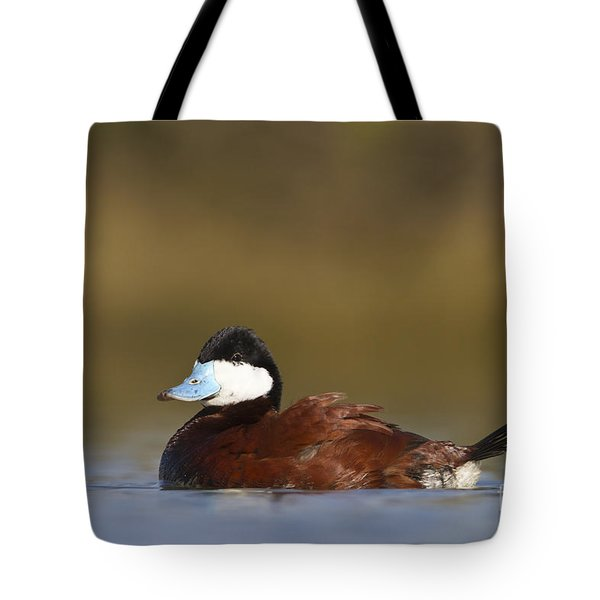 Tote Bag featuring the photograph Ruddy Duck  by Bryan Keil
