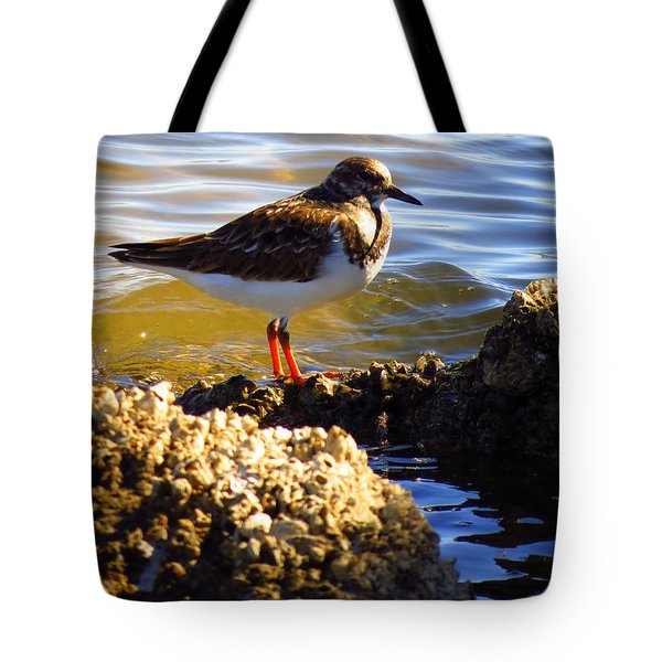 Tote Bag featuring the photograph Ruddy Turnstone  by Phyllis Beiser