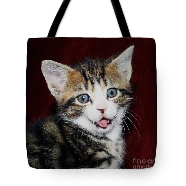 Tote Bag featuring the photograph Rude Kitten by Terri Waters