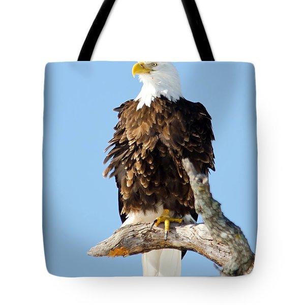 Ruffled Eagle Tote Bag