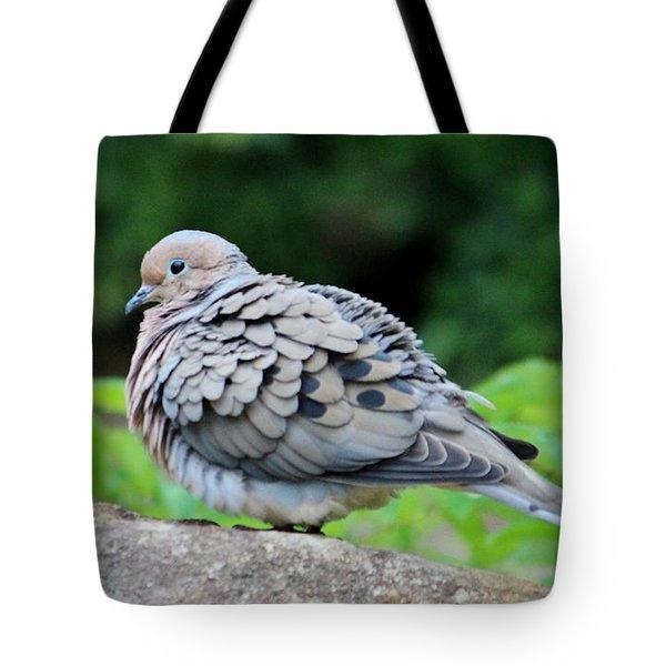 Ruffled Feathers Tote Bag by Cynthia Guinn