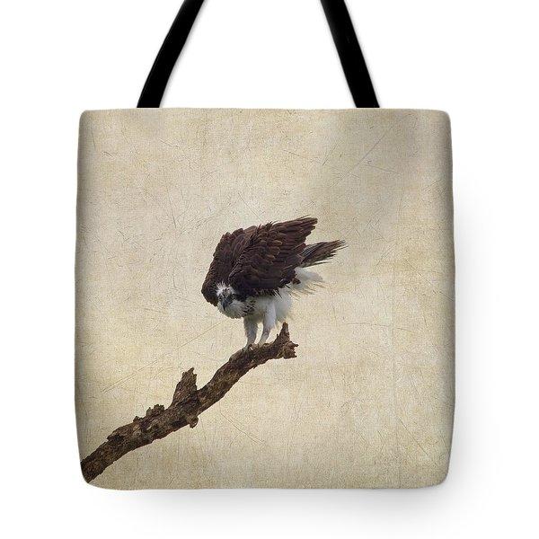 Ruffled Up Osprey Tote Bag by Kim Hojnacki