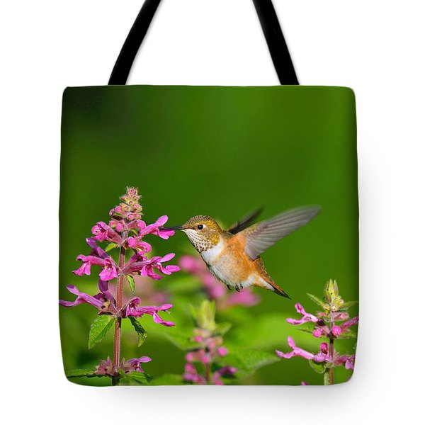 Rufous Hummingbird Feeding Tote Bag