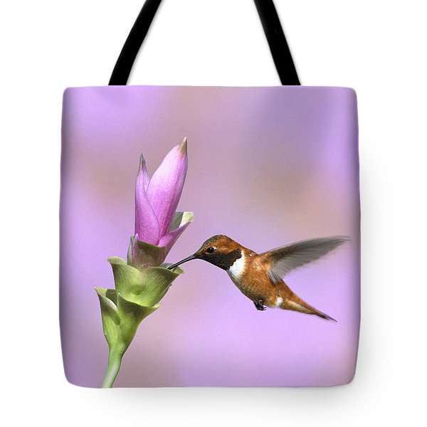 Rufous Hummingbird Male Feeding Arizona Tote Bag