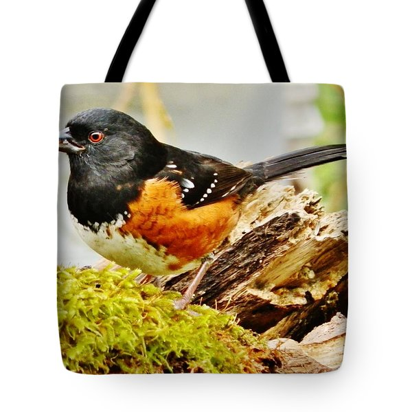 Tote Bag featuring the photograph Spotted Towhee by VLee Watson