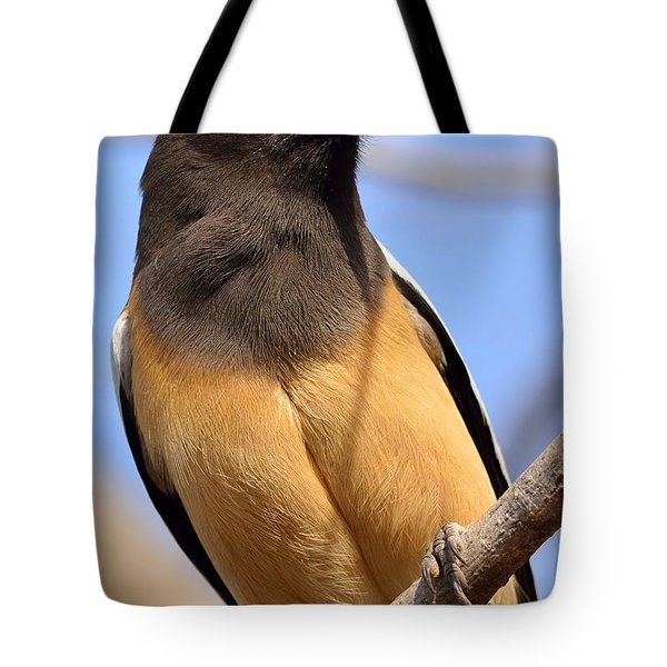 Rufous Treepie. Another Portrait Tote Bag by Fotosas Photography