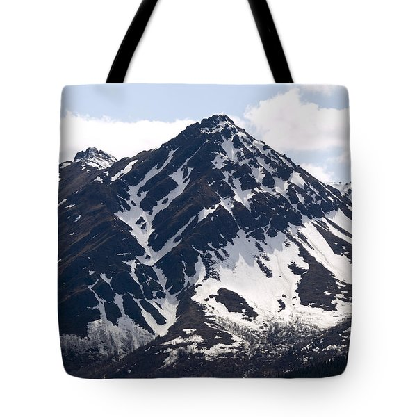 Rugged  Tote Bag by Tara Lynn