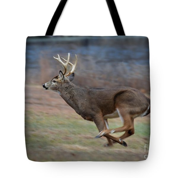Running Buck Tote Bag by Amy Porter