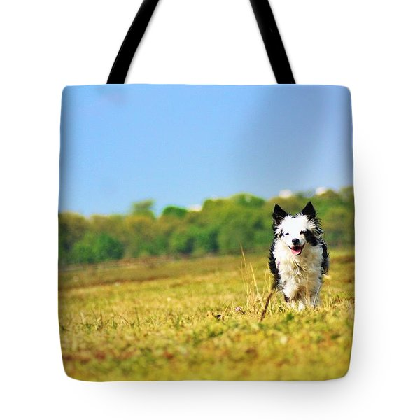 Running Dog Tote Bag by Daniel Precht