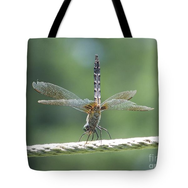 Running On All Six Tote Bag by Eunice Miller