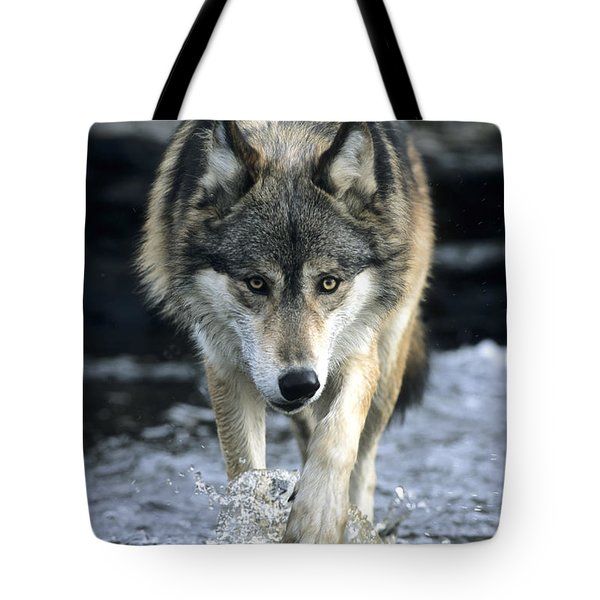 Running Wolf Tote Bag by Chris Scroggins